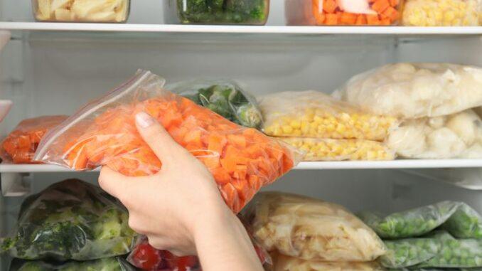 peluang bisnis frozen food
