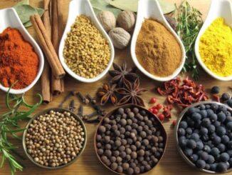 peluang usaha bisnis herbal